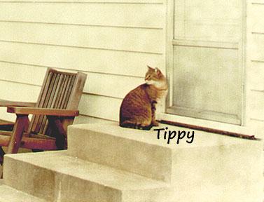 1975 Tippy